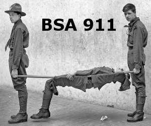 Troop 911