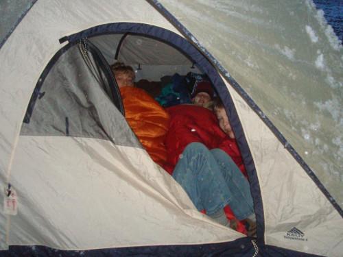 hibernating scouts