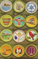 Top 10 Useful Merit Badges
