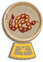 National Honor Patrol
