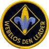 webelos scout