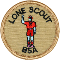 Scout from Home
