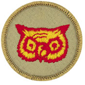 Official licensed wood badge owl with beads patrol patch.